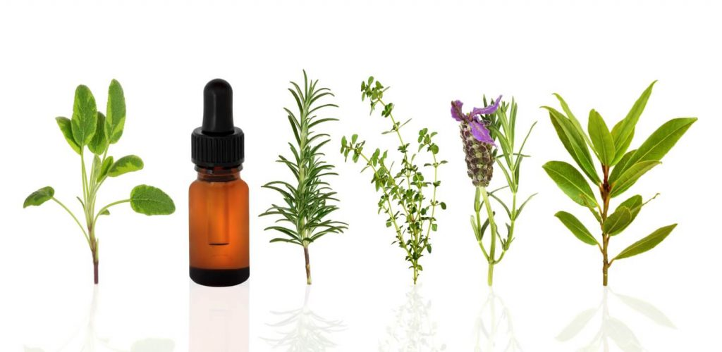 natural products change with time - what it means?- lavender antural cosmetic